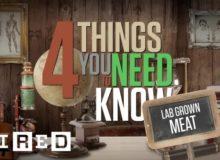 Čtyři základní informace o masu z laboratoře