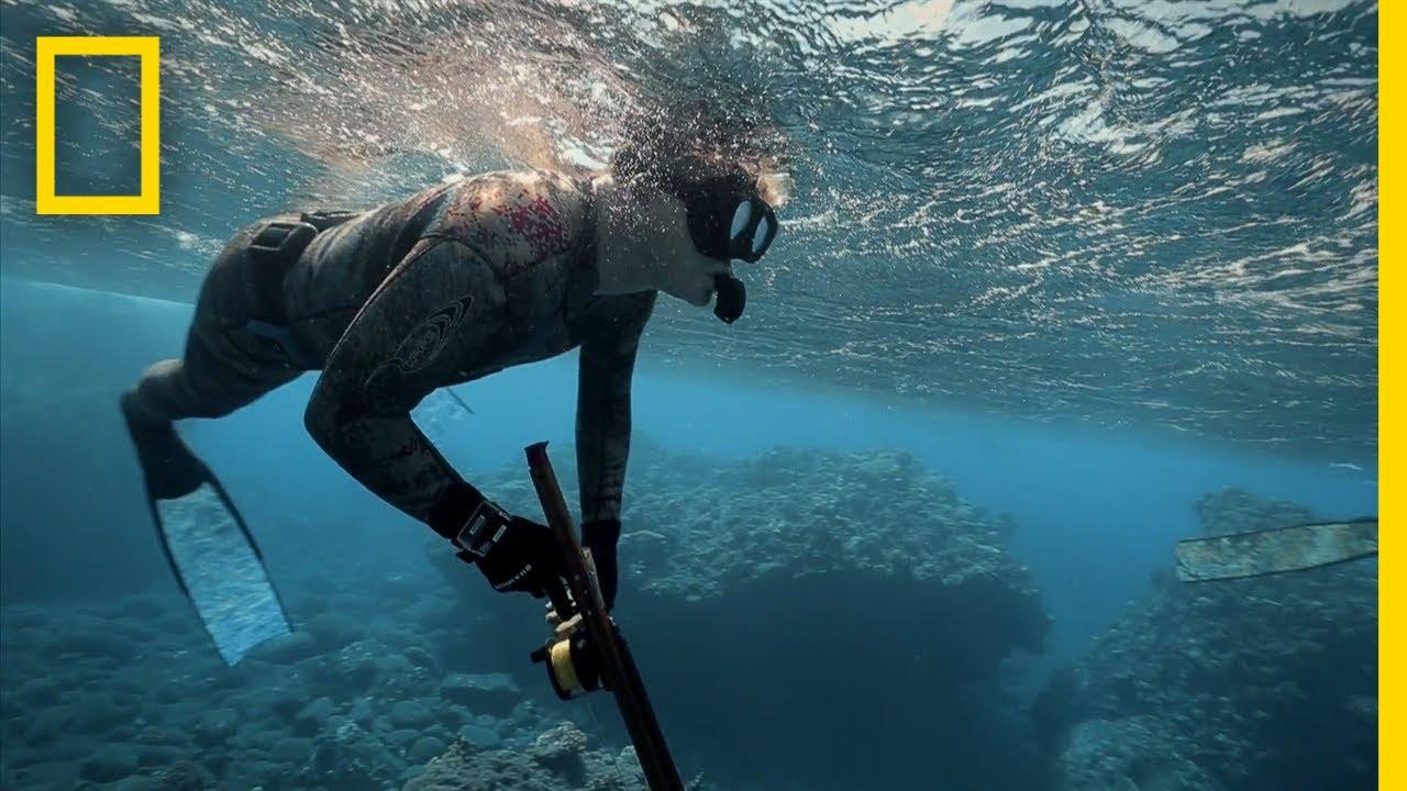 Gordon Ramsay a syrová ryba