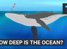 Jak je hluboký oceán?
