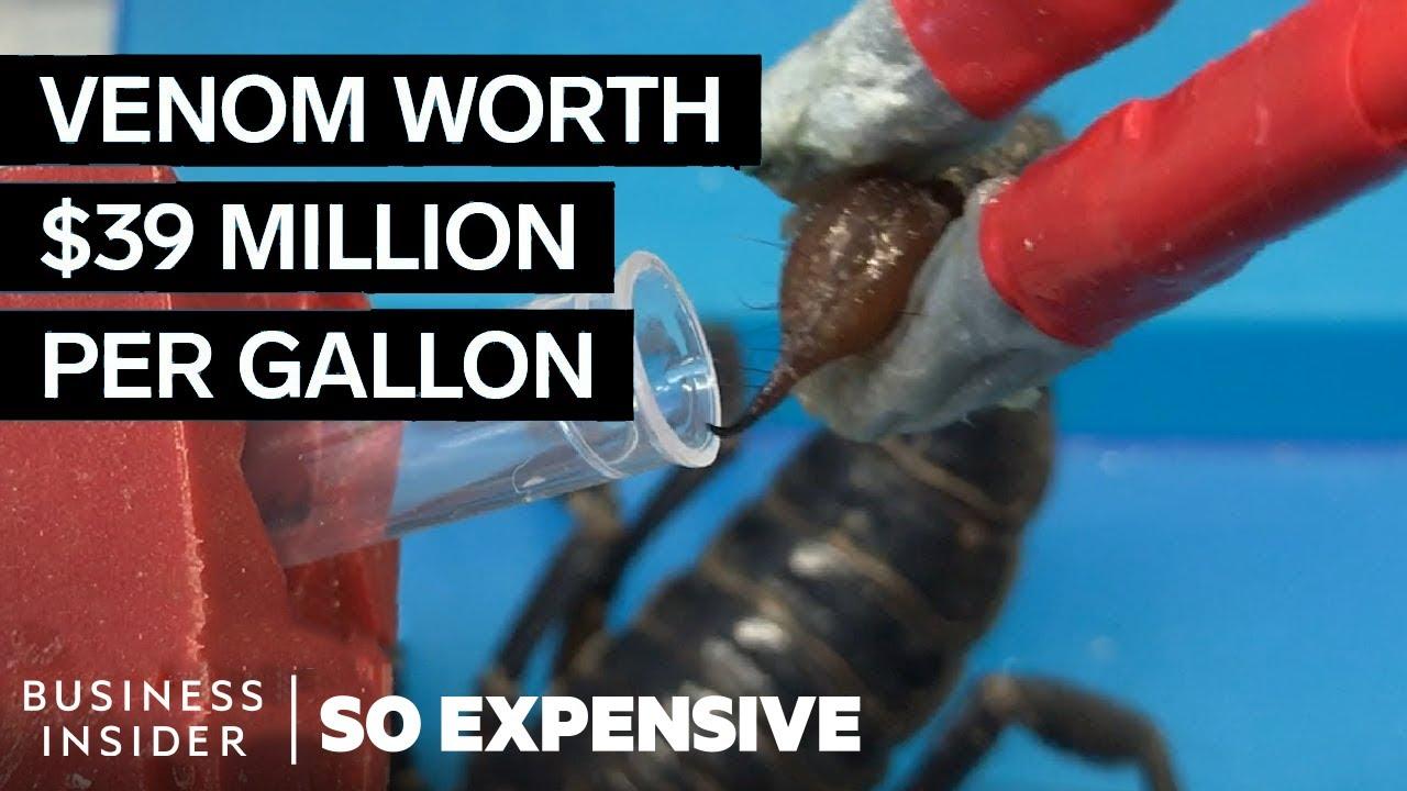 Jed škorpióna jako nejdražší tekutina na světě