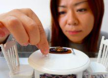 Miniaturní vaření