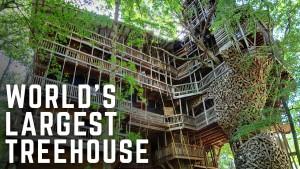Největší dům ve stromech